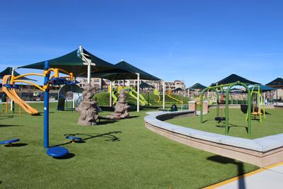 Dog Park Rio Rancho